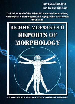 """Результат пошуку зображень за запитом """"Reports of Morphology"""""""